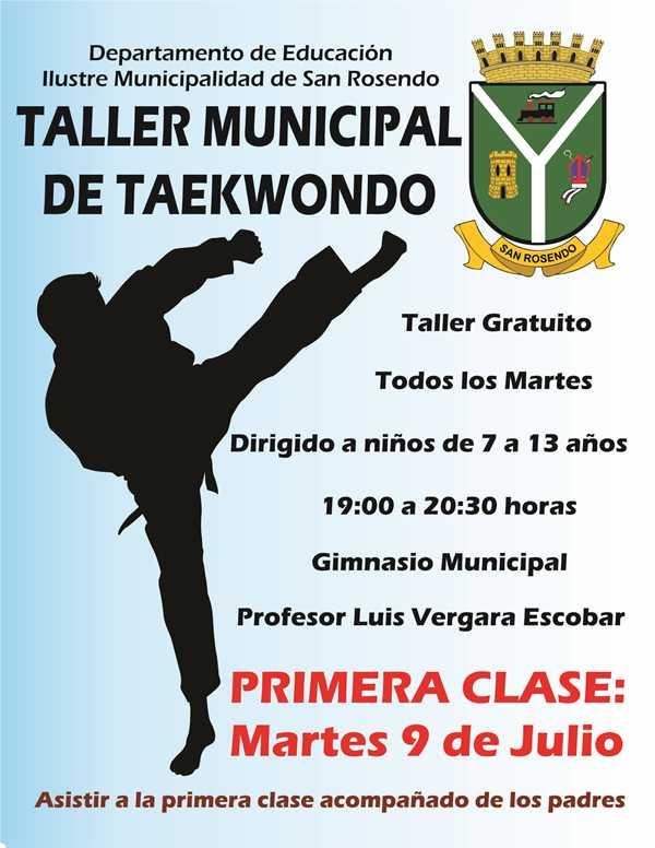 Afiche Taller Taekwondo pweb