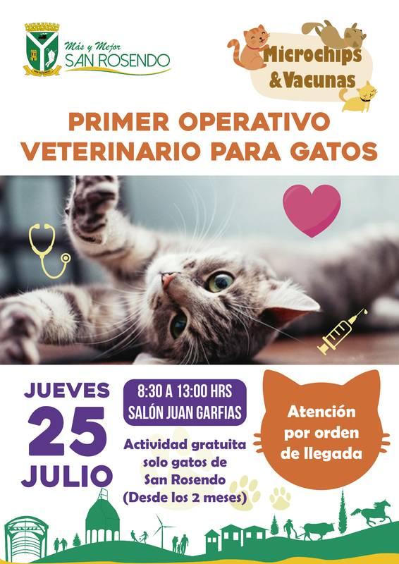 San Rosendo • Operativo Veterinario